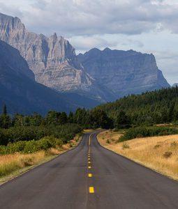 montana national park nature tour vacation wildlife